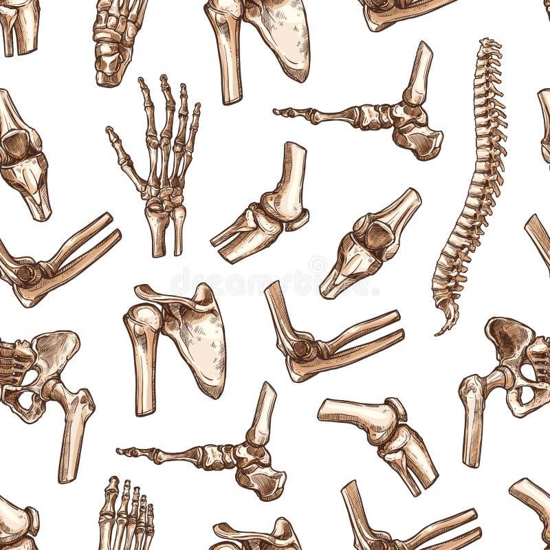 O corpo humano do teste padrão sem emenda do vetor desossa o esboço ilustração do vetor