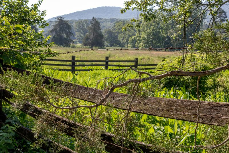 O corredor da cerca coloca embora imagem de stock royalty free