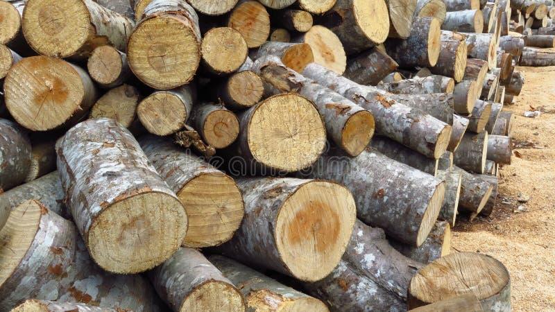 O corte da madeira da pilha remenda a lenha fotografia de stock royalty free