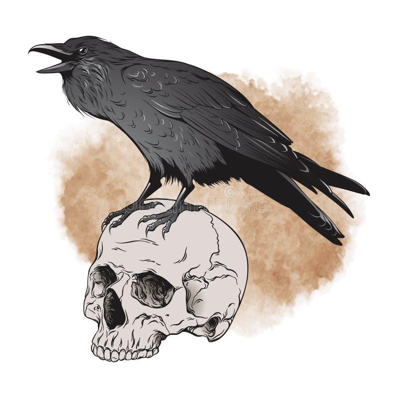 O corvo e o crânio no fundo do sepia vector a ilustração ilustração stock