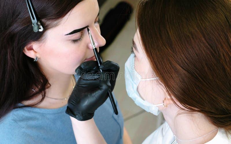 O Cosmetologist põe a pintura sobre as sobrancelhas do ` s do cliente com escova Vista lateral Correção da sobrancelha foto de stock royalty free