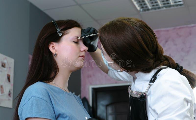 O Cosmetologist põe a pintura sobre as sobrancelhas do ` s do cliente com escova Vista lateral Correção da sobrancelha imagem de stock royalty free