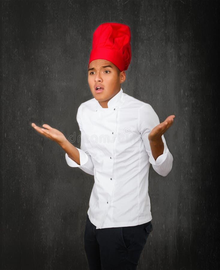 O cozinheiro chefe estorva fotografia de stock royalty free