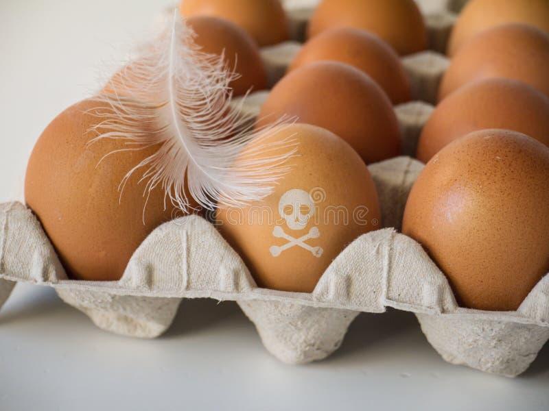 O crânio e os ossos cruzados carimbam em ovos imagens de stock royalty free
