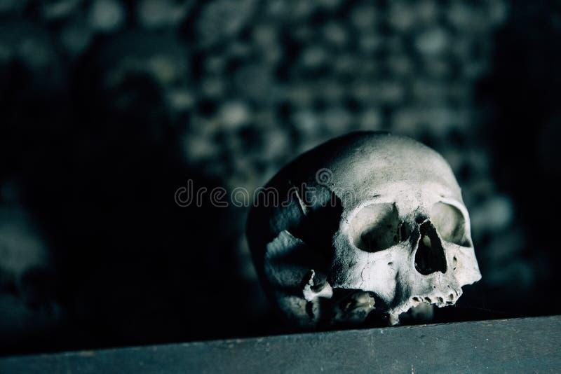 O cr?nio e os ossos humanos est?o no tiro escuro da noite da catacumba fotos de stock royalty free