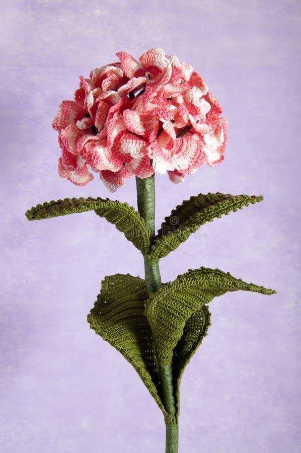 O Crochet floresce o hydrangea azul imagem de stock