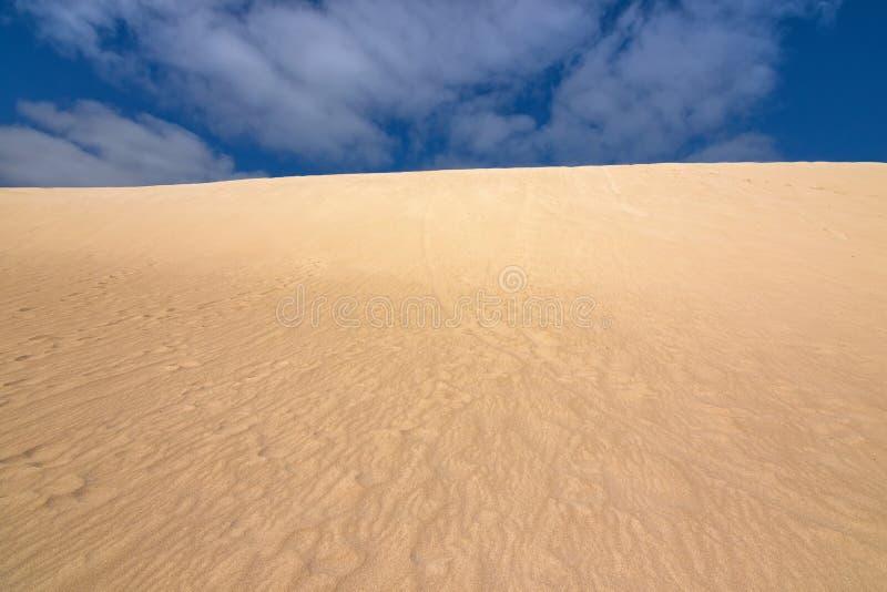 O cume alto do monte da areia com o céu azul em pouco Sahara, canguru é foto de stock