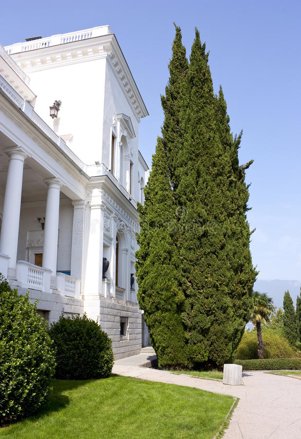 O Cypress perto do palácio foto de stock royalty free