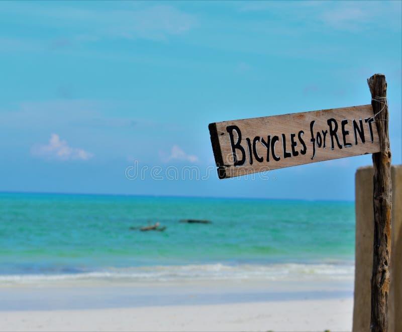 O ` da placa de madeira Bicycles para o ` do aluguel colocado na praia ao lado da água azul foto de stock