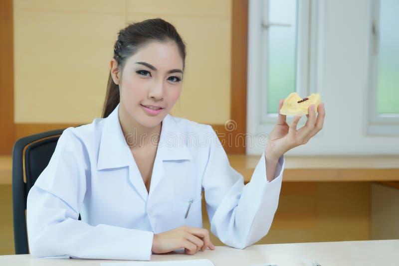 O dentista bonito novo da mulher que guarda a dentadura moldou o modelo fotografia de stock royalty free