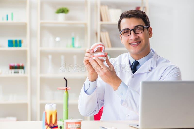 O dentista novo que trabalha no hospital da odontologia imagem de stock royalty free