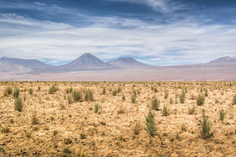 O deserto de Atacama fotografia de stock royalty free