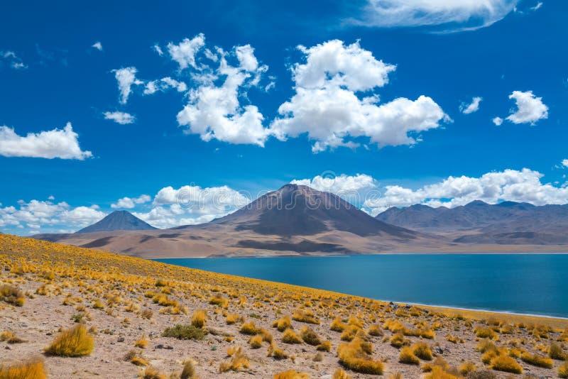 O deserto de Atacama Altiplana, de sal de Laguna Miscanti lago e montanhas ajardinam, Miniques no Chile, Ámérica do Sul foto de stock royalty free
