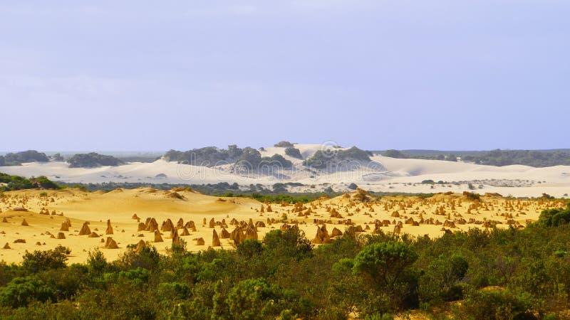 O deserto dos pináculos - Austrália Ocidental imagens de stock royalty free