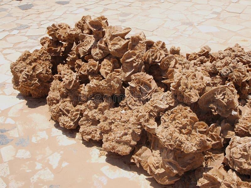 O deserto levantou-se imagens de stock royalty free