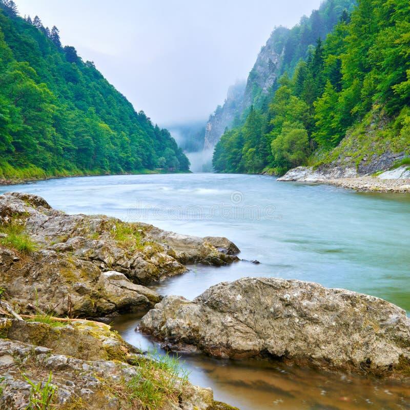 O desfiladeiro do rio da montanha na manhã imagem de stock