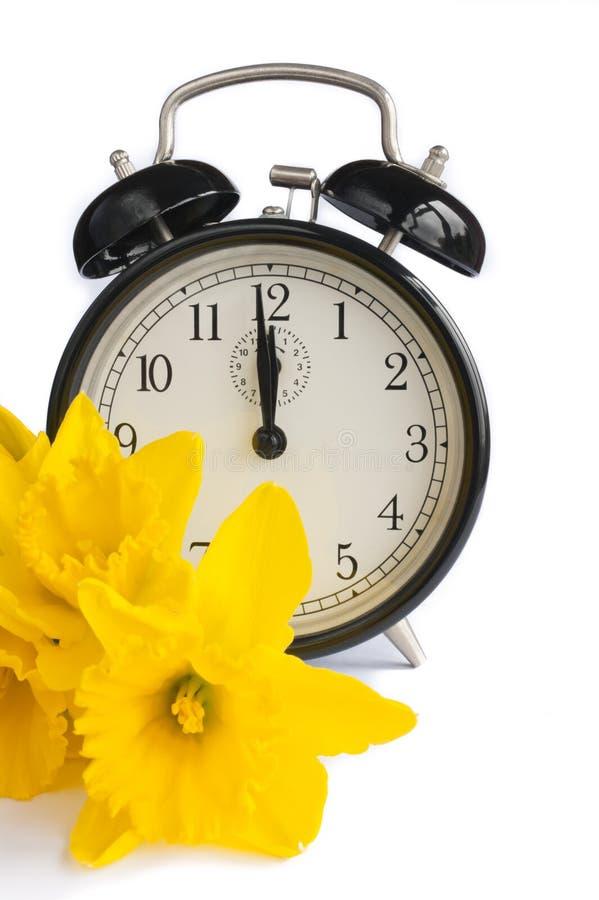 Pulso de disparo do vintage, daffodils amarelos, mola, dst. fotos de stock royalty free