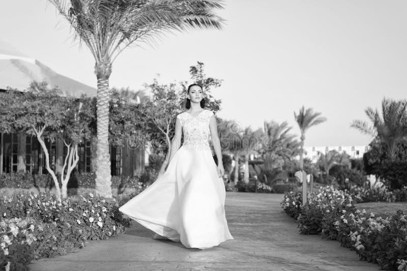 O dia do casamento está aqui Fundo tropico branco luxuoso da natureza do dia ensolarado de vestido de casamento da noiva Casament foto de stock