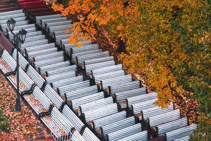 O dia ensolarado do outono, deslocou os bancos de parque, fim da estação, folhas de queda, folha alaranjada das árvores, vista su foto de stock