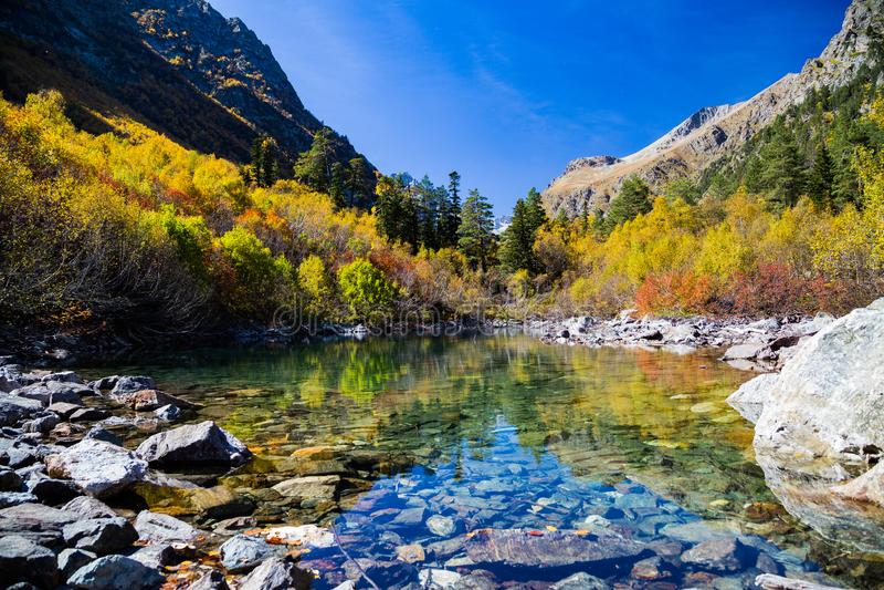 O dia ensolarado fantástico está no lago da montanha Carpathian, Ucrânia, Europa fotos de stock royalty free