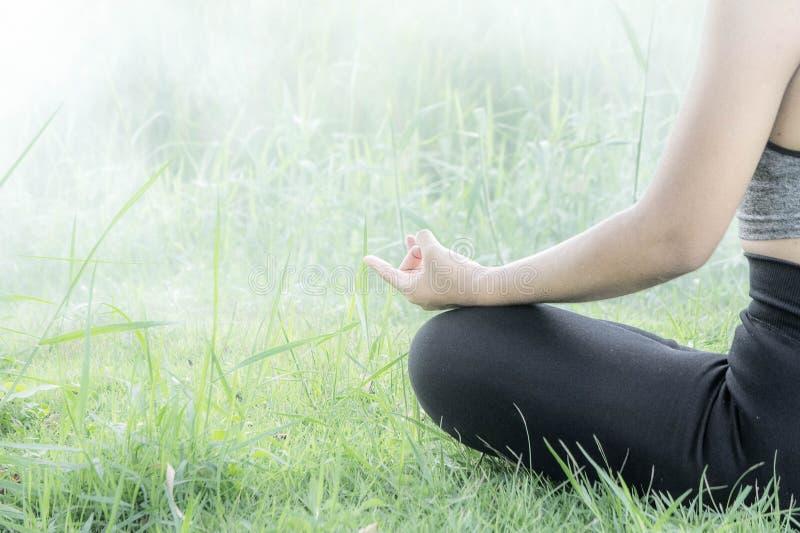 O dia praticando da ioga da mulher relaxa nas ajudas t do exercício da ioga da natureza imagens de stock