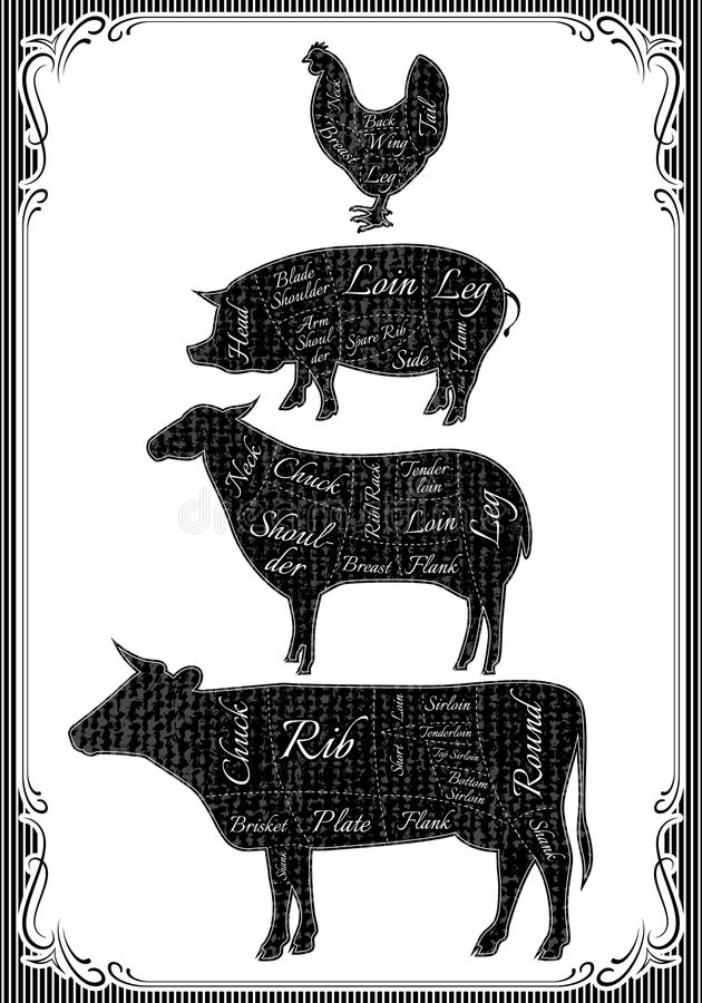 O diagrama cortou carcaças da galinha, porco, vaca, cordeiro ilustração do vetor