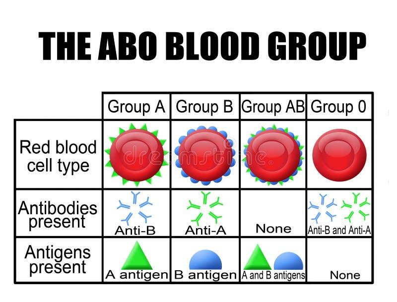 O diagrama do grupo sanguíneo do ABO ilustração stock