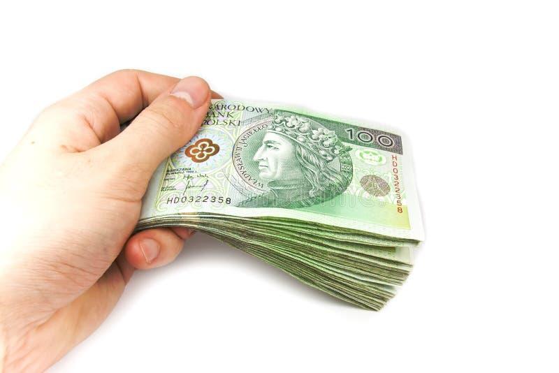 O dinheiro polonês isolou-se à disposicão imagens de stock