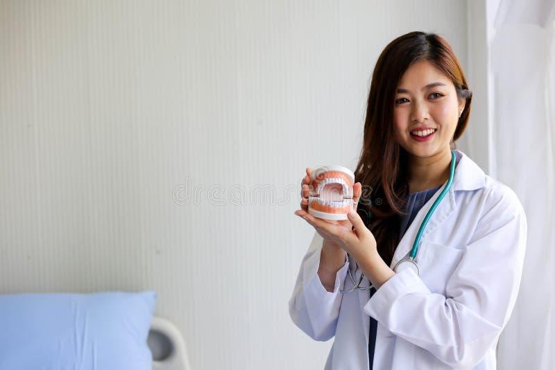 O doutor bonito do dentista da mulher que aponta os dentes modela, conceito de verificação dental fotos de stock