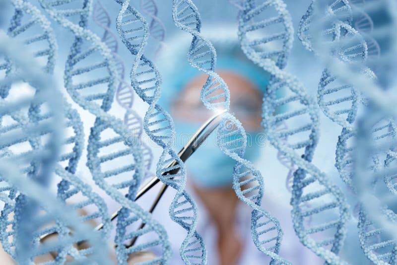 O doutor examina moléculas do ADN imagens de stock