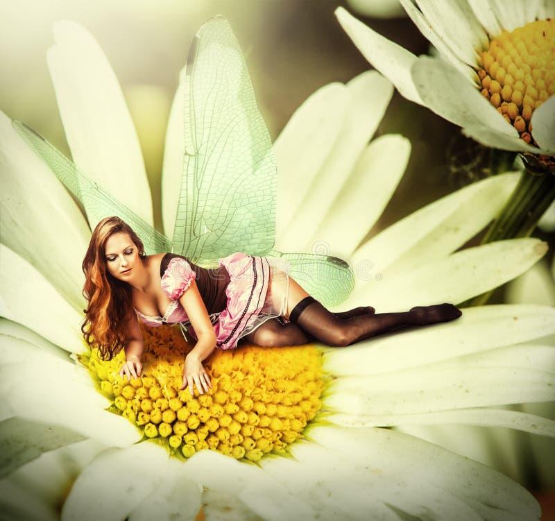 O duende da mulher encontra-se em uma flor da margarida imagens de stock royalty free