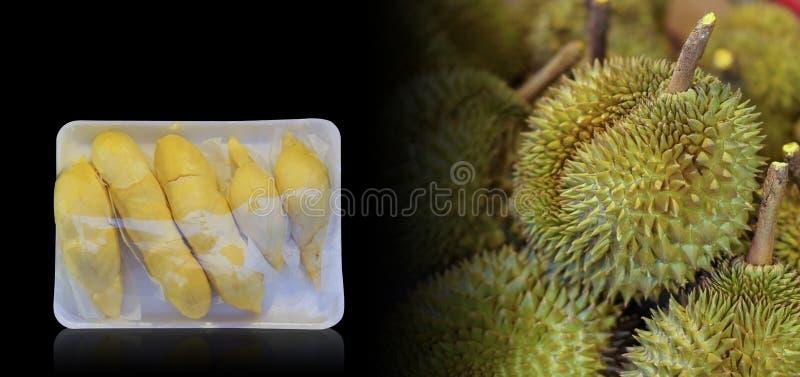 O Durian da vista dianteira está em um pacote da espuma Envolvido com plástico claro, fundo do fruto, fundo do Durian, espaço da  fotos de stock