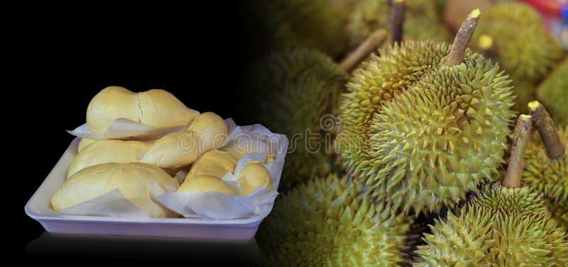 O Durian está em um pacote da espuma, fundo do fruto do Durian, espaço da cópia foto de stock