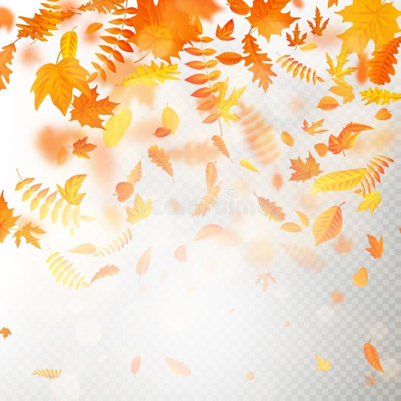 O efeito das folhas de queda do outono mergulha com borrão raso do DOF Molde outonal da queda da folha Cor morna Eps 10 ilustração royalty free