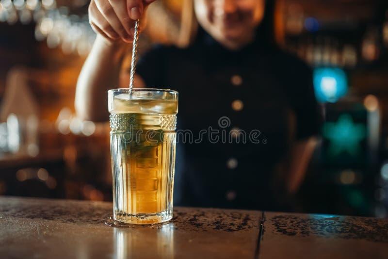 O empregado de bar f?mea agita a bebida em um vidro fotos de stock royalty free