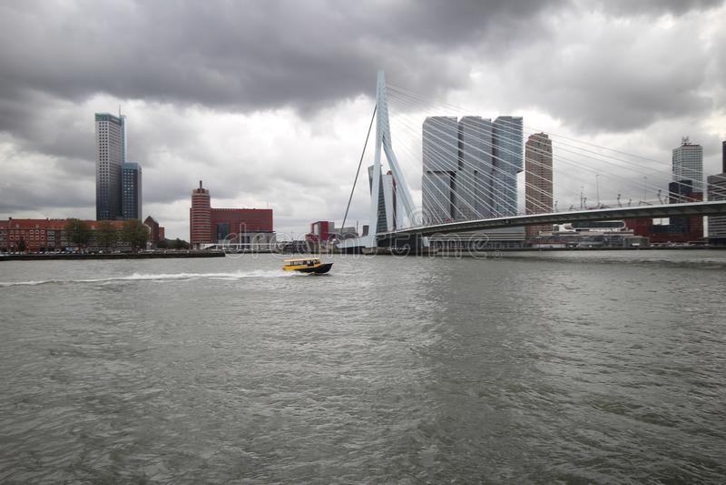 O erasmusbrug da ponte do Erasmus no Dutch em Rotterdam, Países Baixos imagem de stock