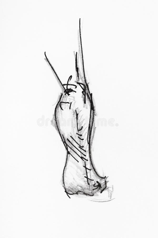 O esboço do verso do pé está no dedo do pé pela tinta ilustração royalty free