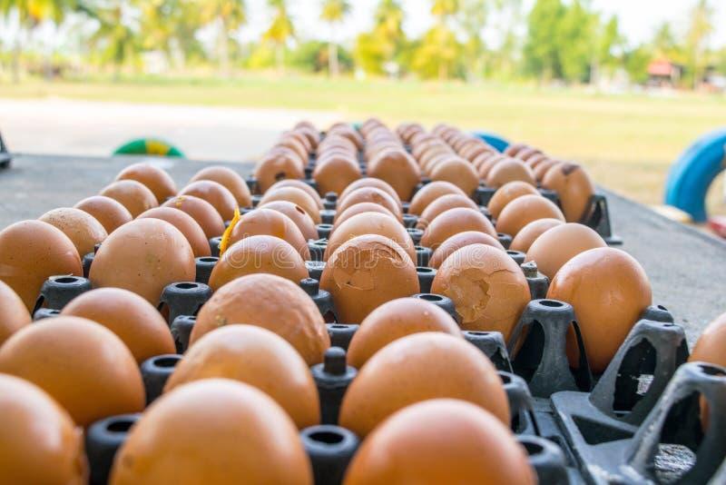 O escudo de ovo é rachado em uma proteína preta da bandeja imagem de stock