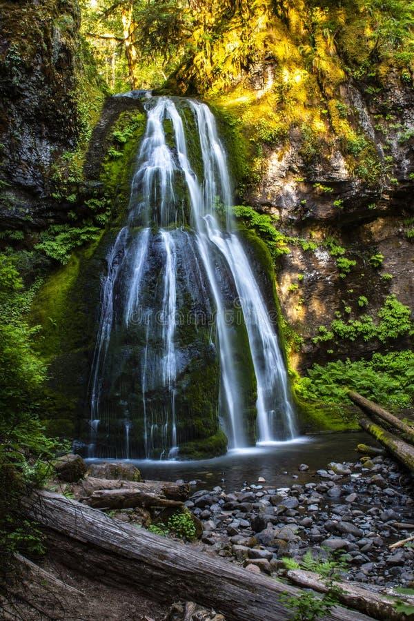 O espírito cai cachoeira de conexão em cascata em Oregon do noroeste pacífico fotos de stock royalty free
