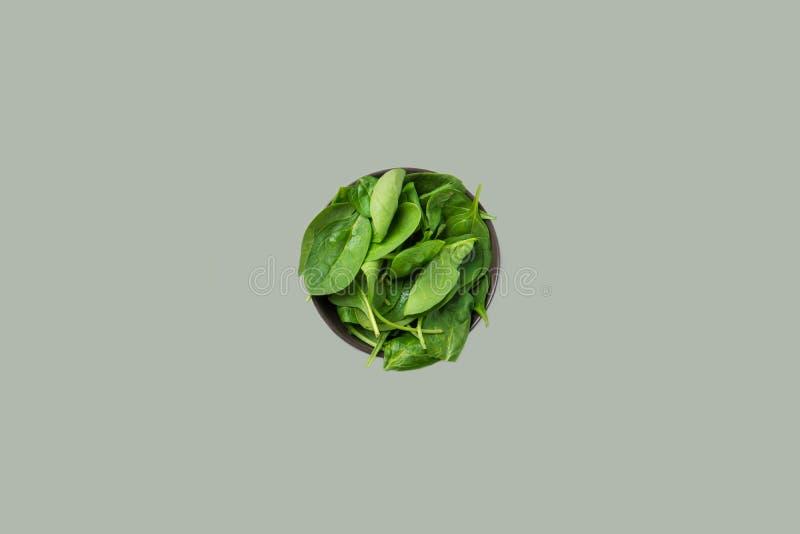 O espinafre cru fresco sae na bacia escura no fundo cinzento contínuo Vista superior isolada A planta saudável baseou batidos da  fotos de stock
