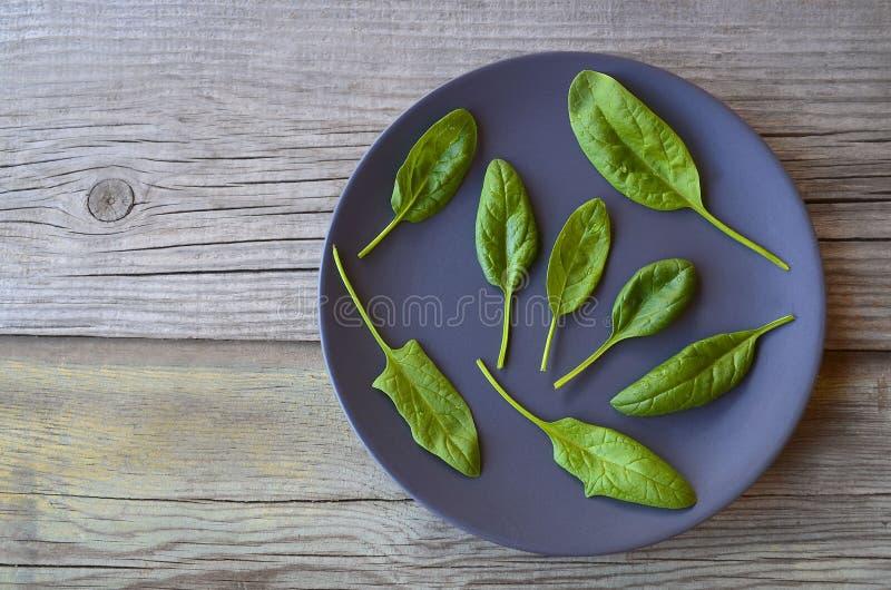 O espinafre orgânico verde fresco sae em uma placa escura no fundo de madeira imagem de stock royalty free