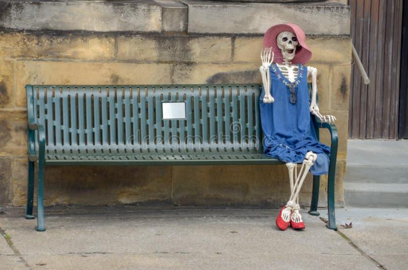 O esqueleto fêmea amigável acena olá! imagem de stock