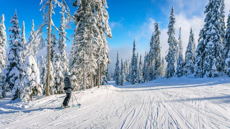 O esquiador da mulher que aprecia a paisagem do inverno no esqui inclina-se fotos de stock royalty free