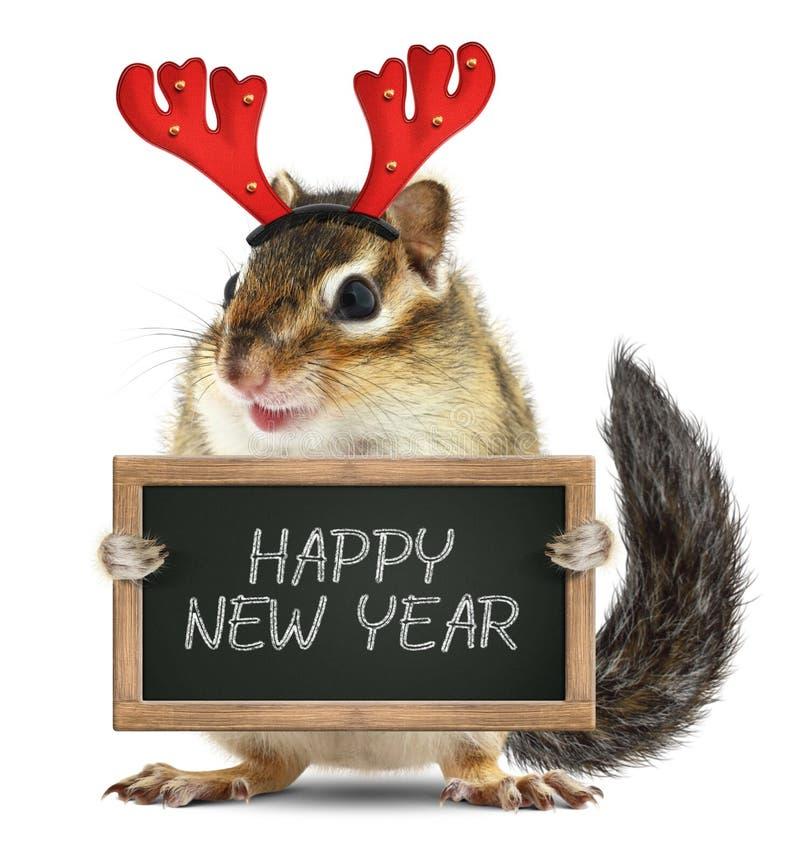 O esquilo animal engraçado com os chifres dos cervos do Natal guarda o quadro-negro imagens de stock