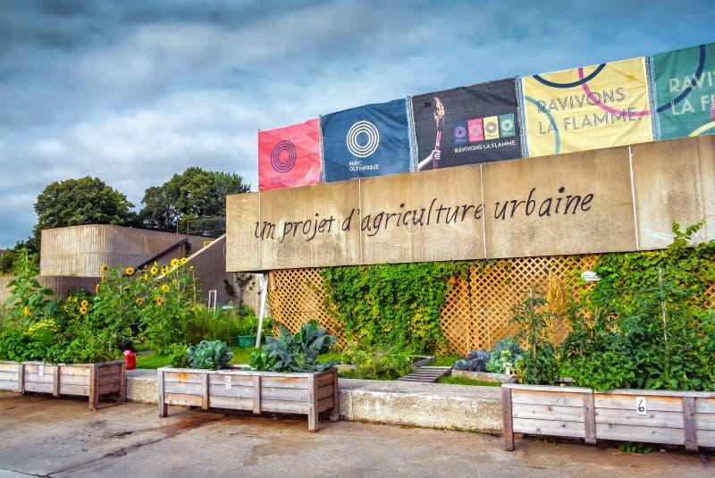 O Estádio Olímpico (um projeto urbano da agricultura) foto de stock