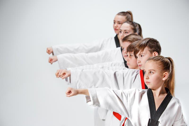 O estúdio disparou do grupo de crianças que treinam artes marciais do karaté fotos de stock royalty free