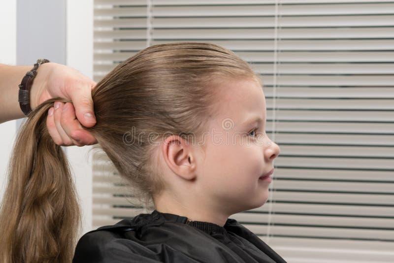 O estilista do cabeleireiro faz uma cauda do penteado do ` s da menina foto de stock