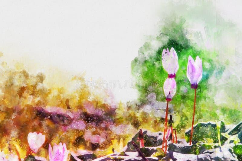 o estilo da aquarela e a imagem abstrata do cíclame florescem ilustração do vetor