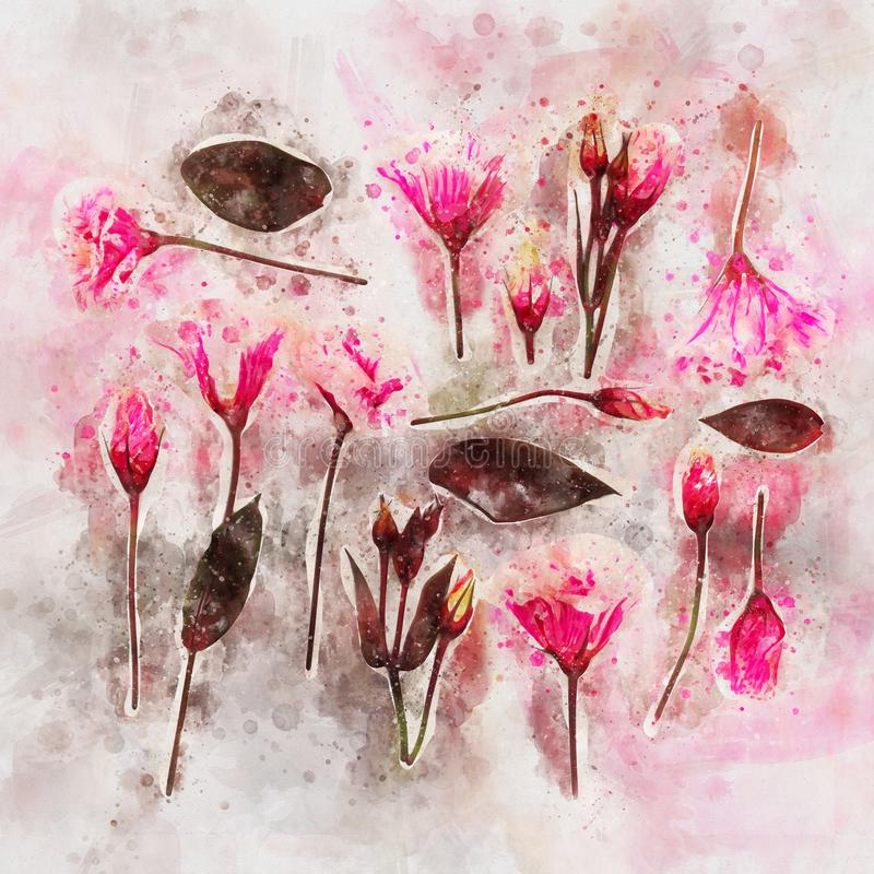 o estilo da aquarela e a imagem abstrata da mola florescem ilustração royalty free