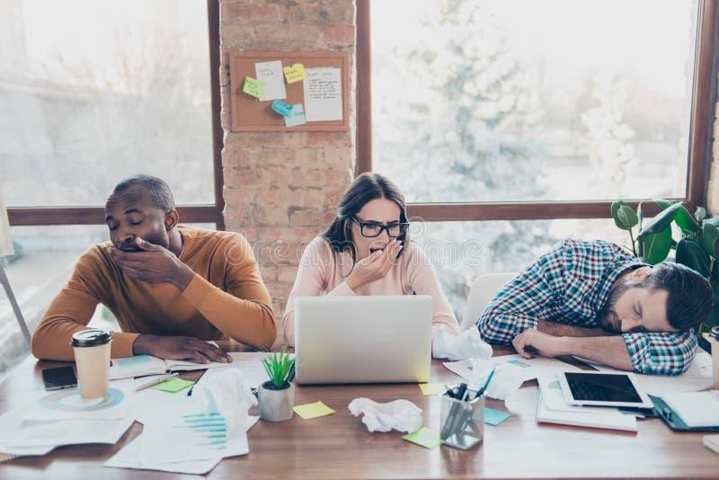 O estudo start-up do exame do desenvolvimento dos colegas dos sócios prepara p imagem de stock